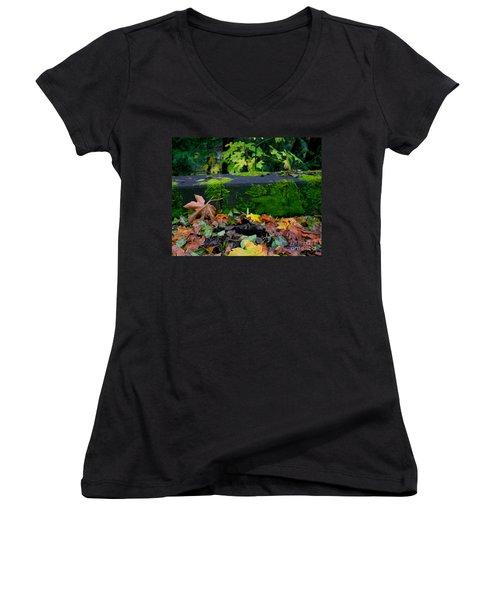 Varigated Fall Women's V-Neck T-Shirt (Junior Cut) by Marie Neder