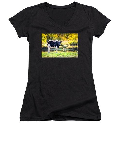 Vermont Farms.01 Women's V-Neck T-Shirt (Junior Cut) by Craig Szymanski