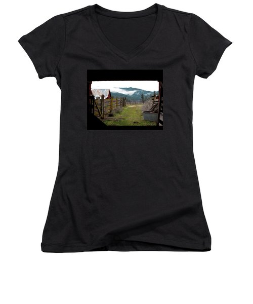 View From A Barn Women's V-Neck (Athletic Fit)