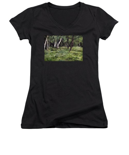 View From My Studio Women's V-Neck T-Shirt (Junior Cut) by Laurie Rohner