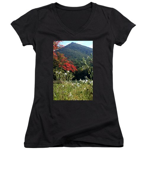 View Of Sharp Top In Autumn Women's V-Neck T-Shirt (Junior Cut) by Emanuel Tanjala