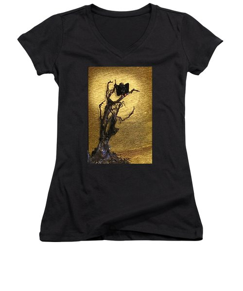 Vulture With Textured Sun Women's V-Neck T-Shirt