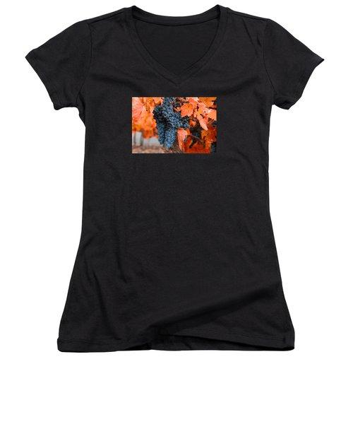 Women's V-Neck T-Shirt (Junior Cut) featuring the photograph Walking Though The Vineyard by Lynn Hopwood
