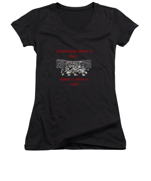 Wall Transparent Women's V-Neck T-Shirt (Junior Cut) by R  Allen Swezey
