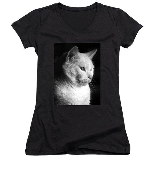Watchful Women's V-Neck T-Shirt (Junior Cut) by Bob Orsillo
