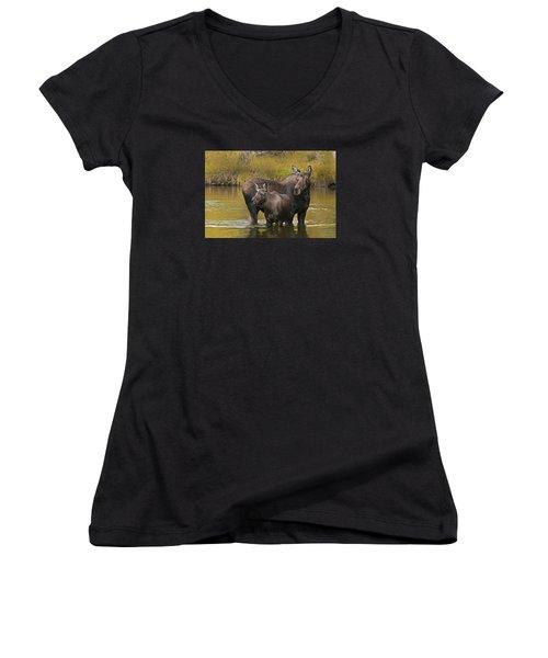 Watchful Moose Women's V-Neck T-Shirt (Junior Cut) by Gary Lengyel