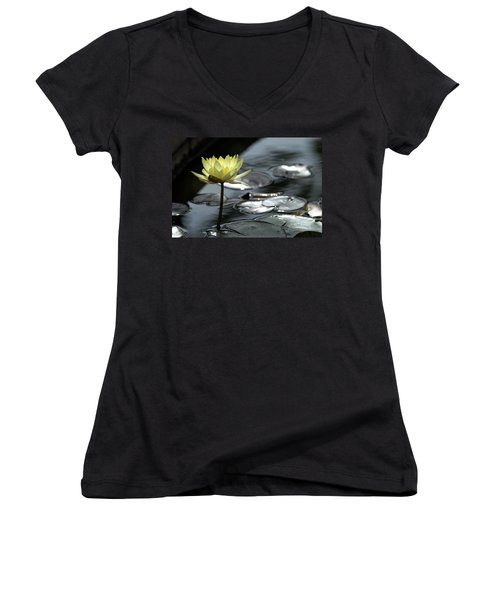 Water Lily And Silver Leaves Women's V-Neck