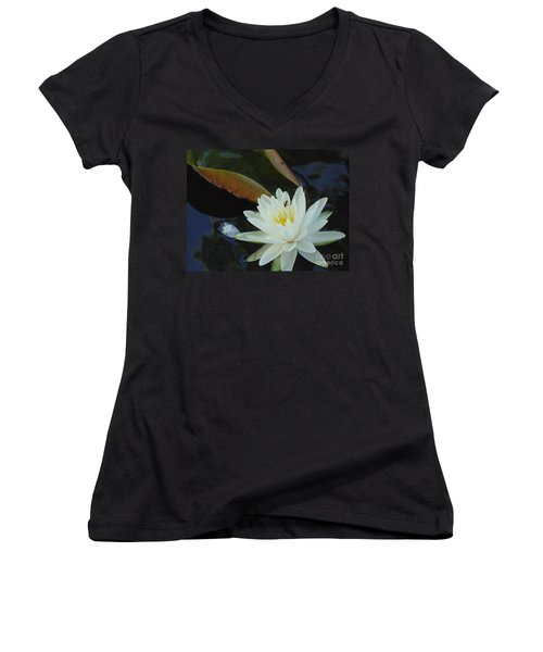 Women's V-Neck T-Shirt (Junior Cut) featuring the photograph Water Lily by Daun Soden-Greene