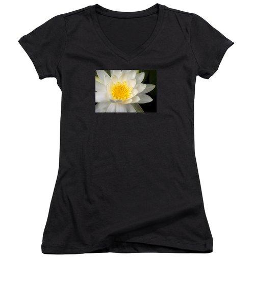 Water Lily II Women's V-Neck T-Shirt (Junior Cut)