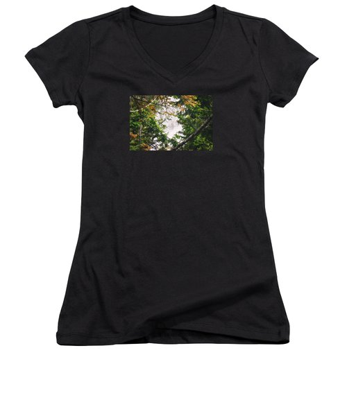 Waterfall Calling My Name Women's V-Neck T-Shirt (Junior Cut) by Janie Johnson