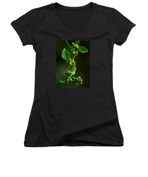 Weaving Vines Women's V-Neck T-Shirt (Junior Cut) by Shelby  Young