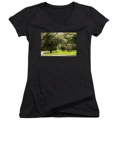 Weeping Willow Trees On Windy Day Women's V-Neck T-Shirt (Junior Cut) by Carol F Austin