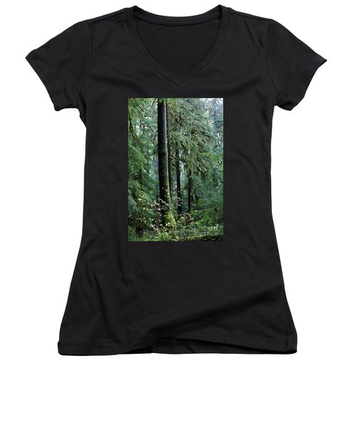 Welcome To The Woods Women's V-Neck T-Shirt (Junior Cut) by Jane Eleanor Nicholas