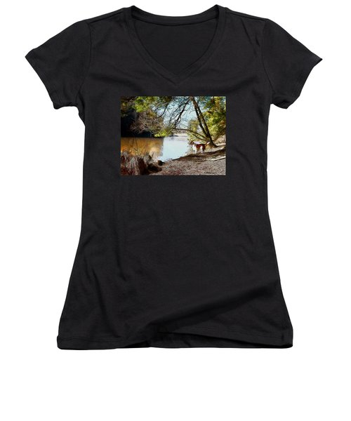 Women's V-Neck T-Shirt (Junior Cut) featuring the painting Welsh Springer Spaniel By The River by Kai Saarto