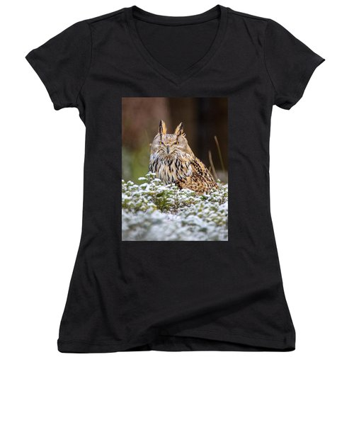 Western Siberian Owl Women's V-Neck (Athletic Fit)