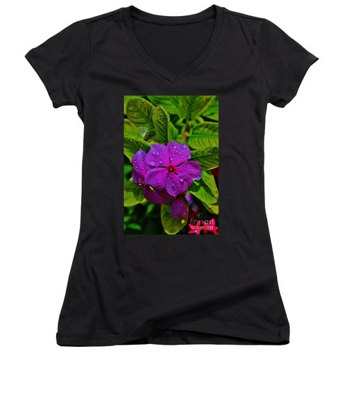 Wet And Wild Women's V-Neck (Athletic Fit)