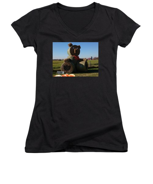 Women's V-Neck T-Shirt featuring the photograph Whistle Bear Harvest by Hanne Lore Koehler
