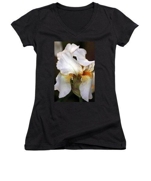 Women's V-Neck T-Shirt (Junior Cut) featuring the photograph White Bearded Iris by Sheila Brown