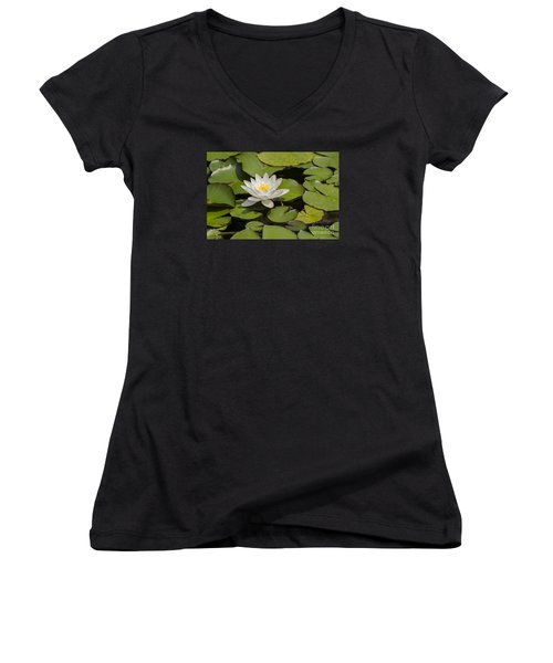 White Lotus Flower Women's V-Neck T-Shirt (Junior Cut) by JT Lewis