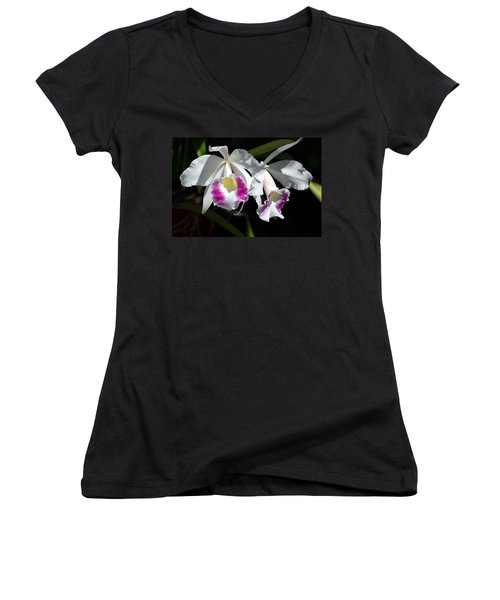 White Orchids Women's V-Neck