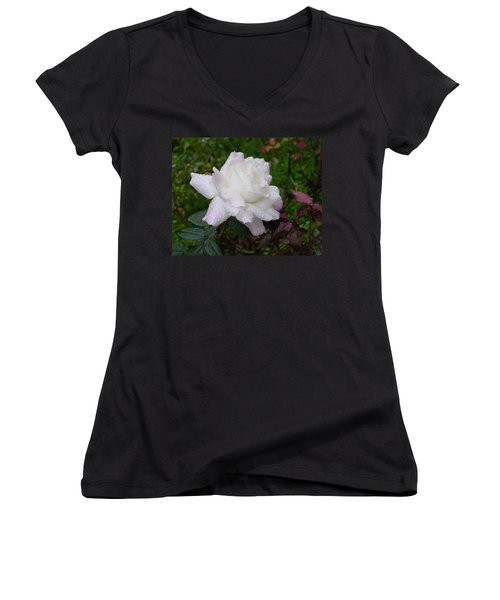 White Rose In Rain Women's V-Neck T-Shirt (Junior Cut) by Shirley Heyn