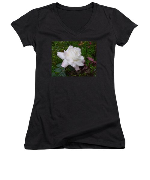 White Rose In Rain Women's V-Neck (Athletic Fit)