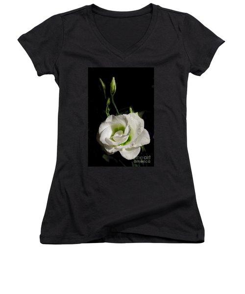 White Rose On Black Women's V-Neck