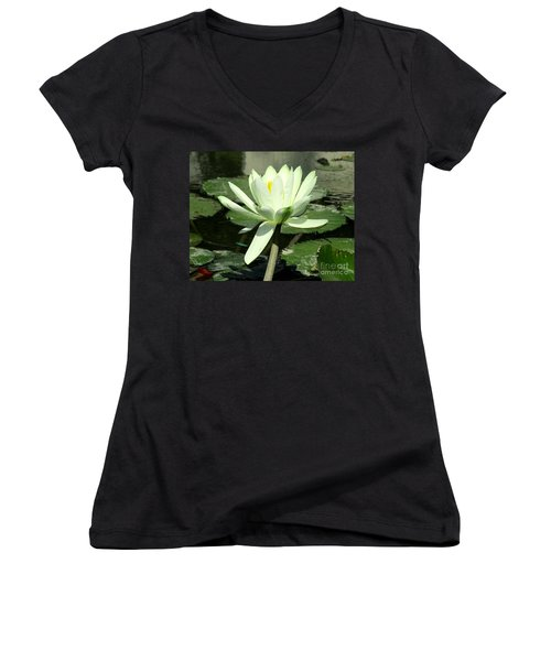 Women's V-Neck T-Shirt (Junior Cut) featuring the photograph White Water Lily 1 by Randall Weidner