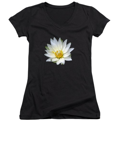 White Waterlily With Dewdrops Women's V-Neck T-Shirt (Junior Cut) by Rose Santuci-Sofranko