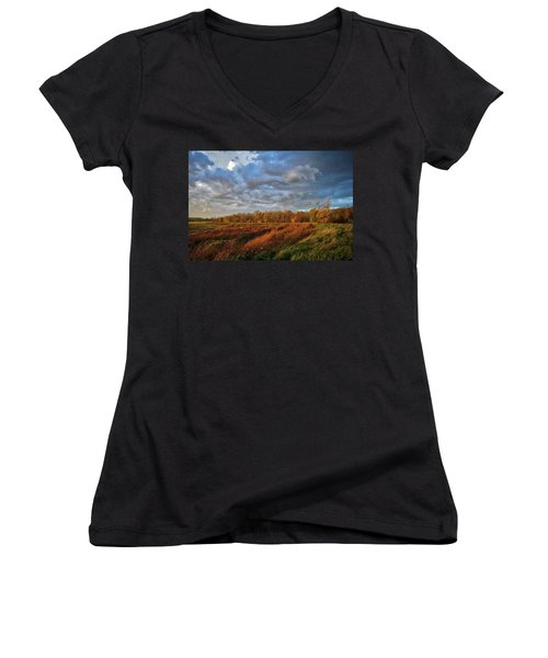 Who Has Seen The Wind? Women's V-Neck T-Shirt (Junior Cut) by Keith Boone