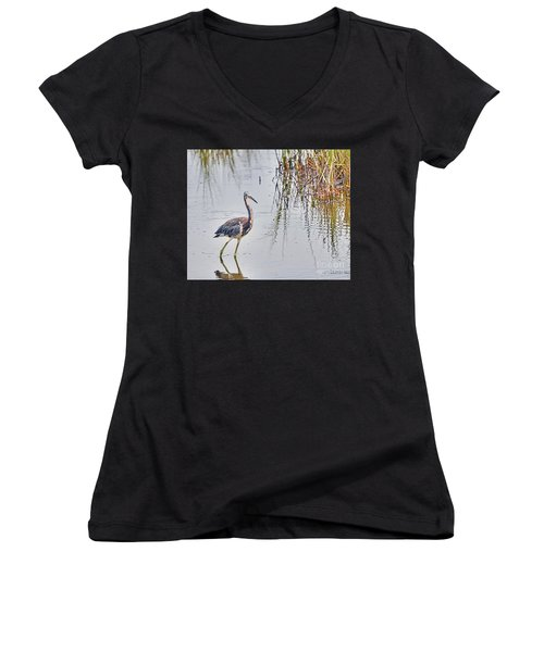 Wild Birds - Tricolored Heron Women's V-Neck