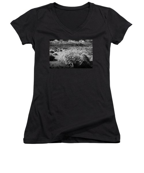 Women's V-Neck T-Shirt (Junior Cut) featuring the photograph Wild Desert Flowers Blooming In Black And White In The Anza-borrego Desert State Park by Randall Nyhof