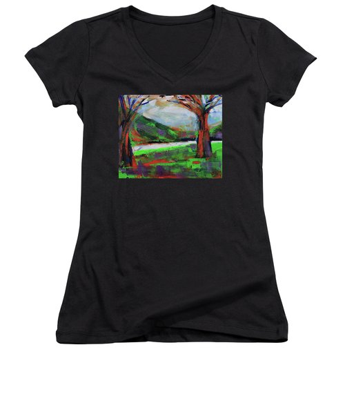 Women's V-Neck T-Shirt featuring the painting Wild Flowers On The River Banks by Walter Fahmy