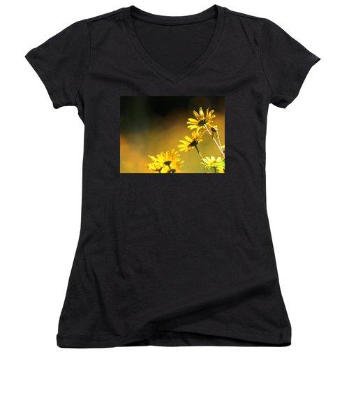 Wild Sunflowers Stony Brook New York Women's V-Neck T-Shirt (Junior Cut) by Bob Savage