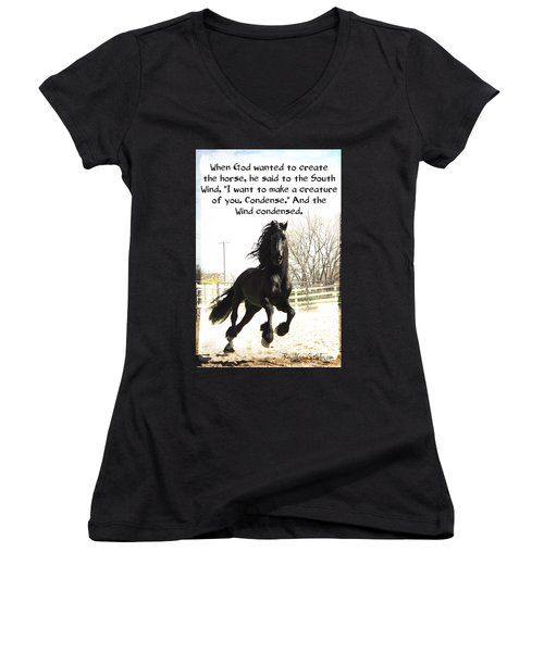 Wind In Your Mist Women's V-Neck (Athletic Fit)