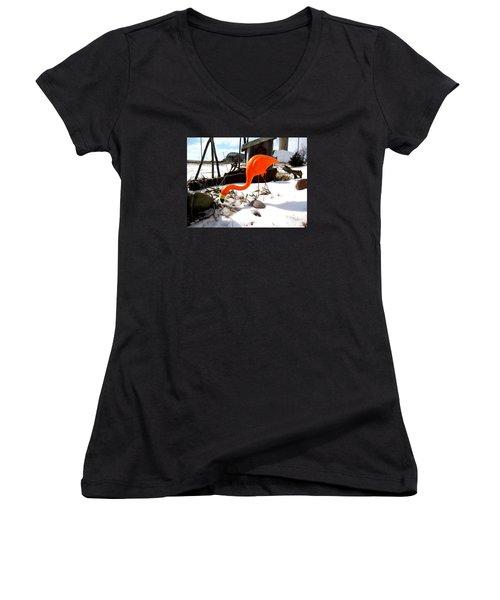 Winter Flamingo Women's V-Neck T-Shirt (Junior Cut) by Jan VonBokel