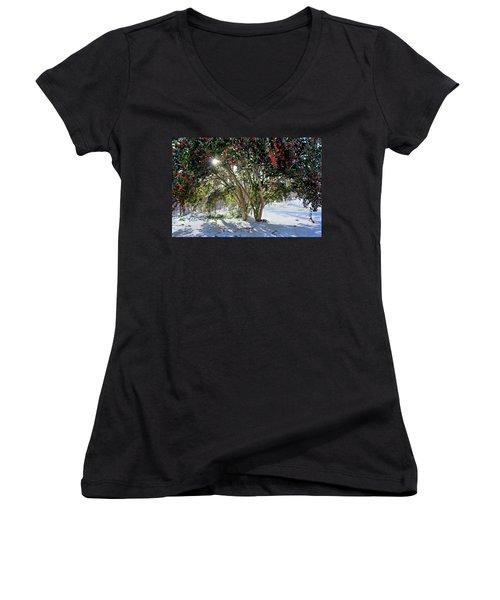 Winter Holly Women's V-Neck T-Shirt