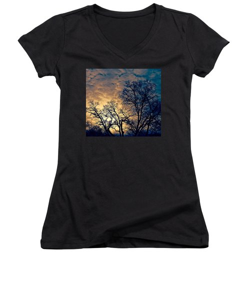 Winter's Afternoon Women's V-Neck T-Shirt (Junior Cut) by Rita Mueller