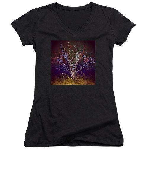 Wisdom Does Not Show Itself Women's V-Neck T-Shirt