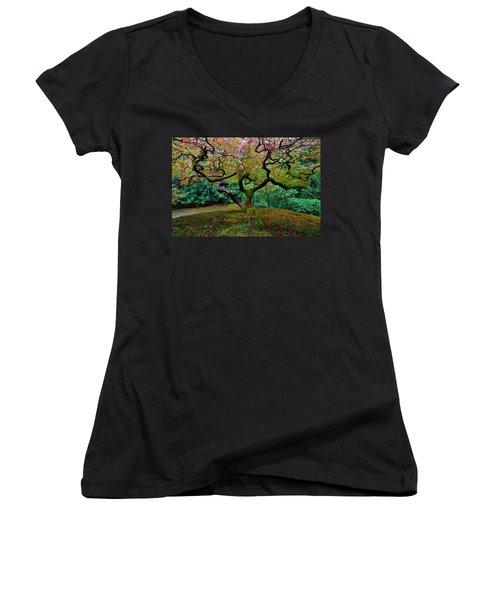 Women's V-Neck T-Shirt (Junior Cut) featuring the photograph Wisdom Tree by Jonathan Davison