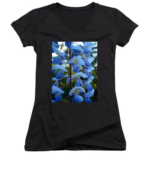 Wisteria - Blue Hooded Ladies Women's V-Neck T-Shirt