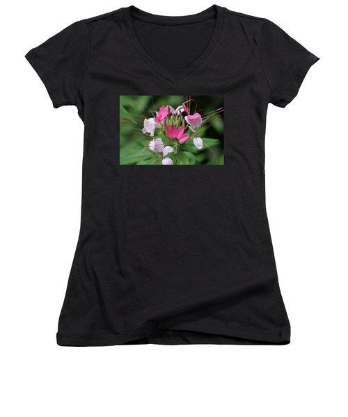 Women's V-Neck T-Shirt (Junior Cut) featuring the photograph Wonders Of Cleome by Deborah  Crew-Johnson