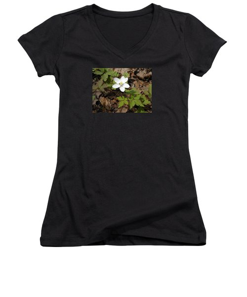 Women's V-Neck T-Shirt (Junior Cut) featuring the photograph Wood Anemone by Linda Geiger
