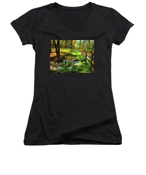 Woodland Symphony Women's V-Neck T-Shirt (Junior Cut) by Cedric Hampton