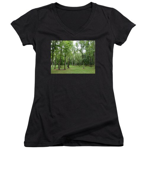Women's V-Neck T-Shirt (Junior Cut) featuring the photograph Woods At Lake Redman by Donald C Morgan