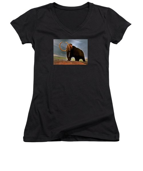 Woolly Mammoth Women's V-Neck T-Shirt (Junior Cut) by Brian Chase