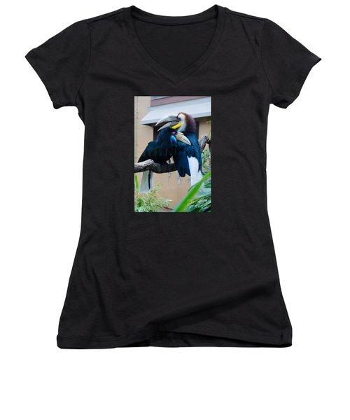Wreathed Hornbills Women's V-Neck (Athletic Fit)