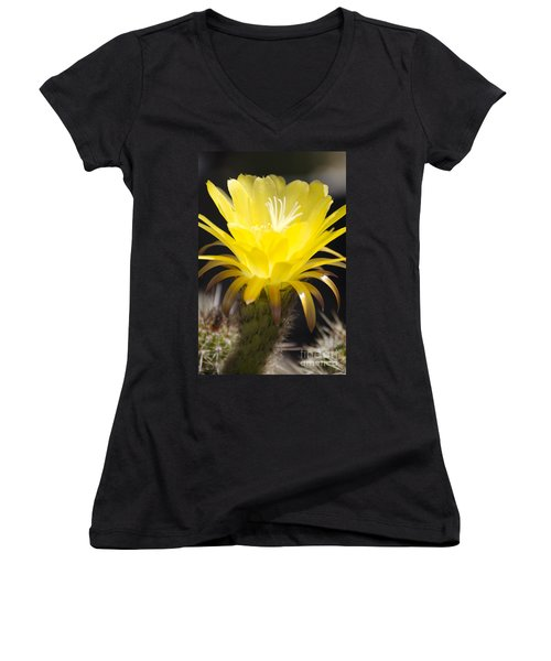 Yellow Cactus Flower Women's V-Neck (Athletic Fit)