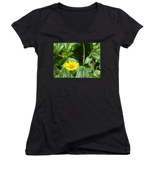Yellow Caribbean Flower Women's V-Neck (Athletic Fit)
