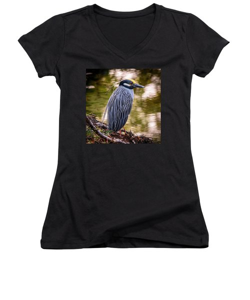 Women's V-Neck T-Shirt featuring the photograph Yellow-crowned Night-heron by Steven Sparks